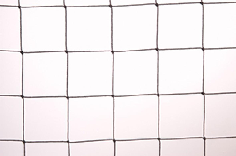 Polythene Net